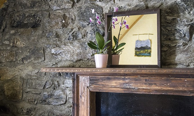 mantlepiece-orchid