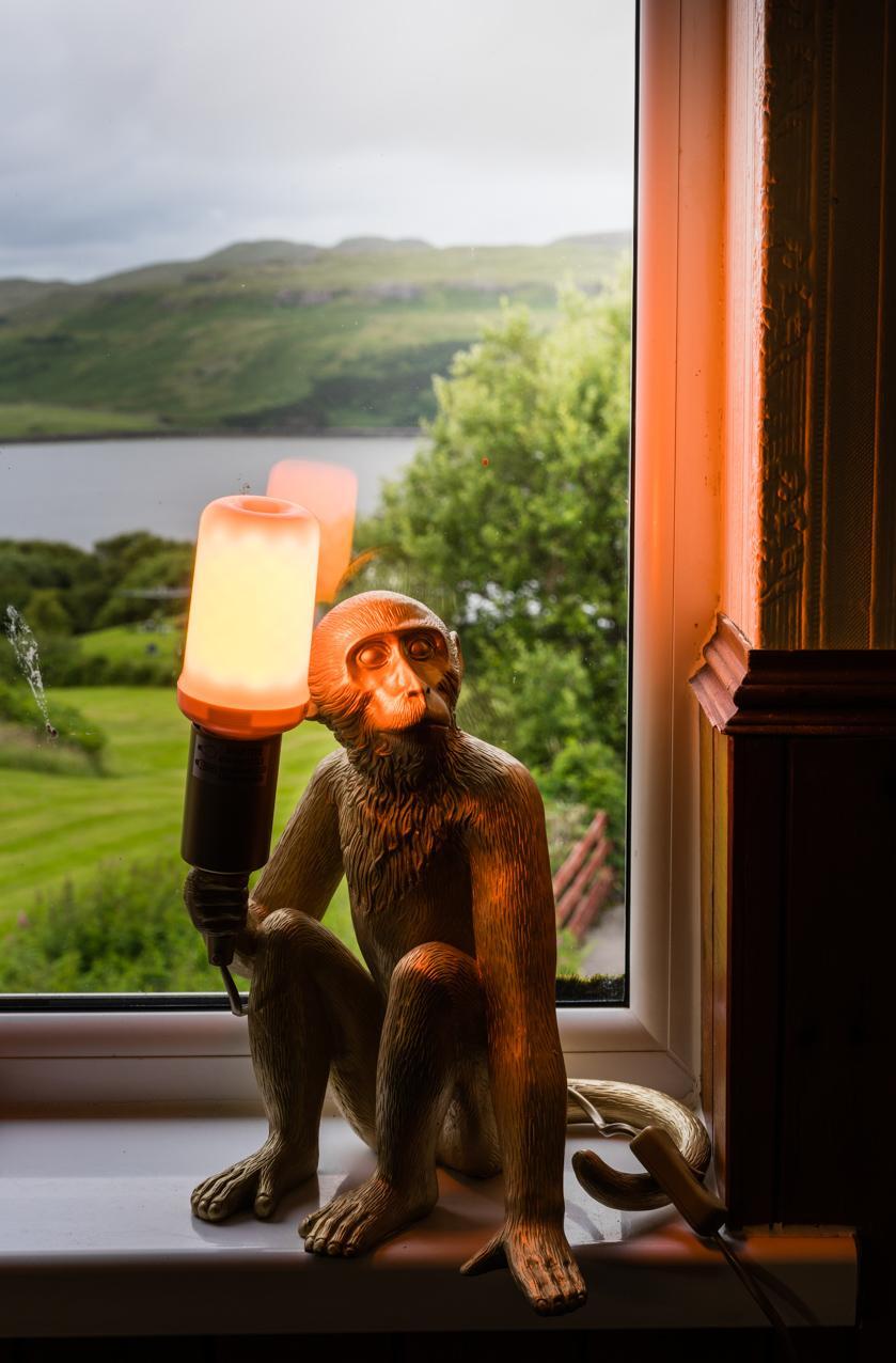 view over loch harport monkey lamp